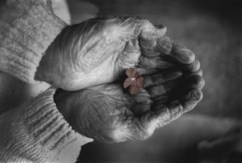 Тремор при болезни Паркинсона: причины, особенности, возможности терапии